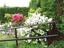 giardino3.jpg